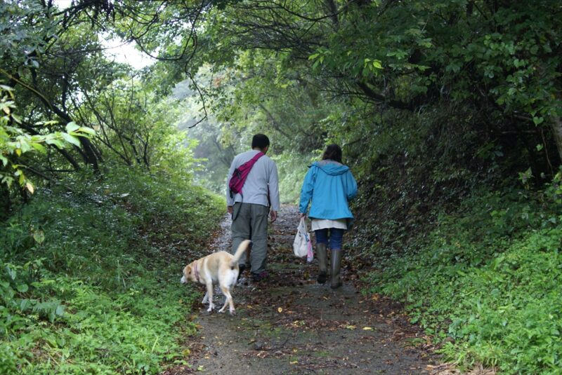 山鳥の森オートキャンプ場 散歩